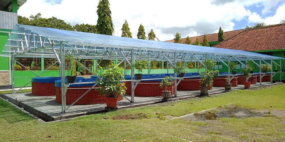 Budidaya Ikan Lele dengan Sistem Bioflok di Muhammadiyah Boarding School MBS Muhiba Jogja